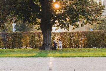 20/10/2017 Den stromů se zahradním architektem