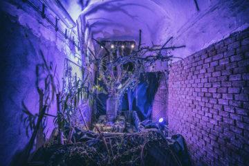 Festival umění, vědy a technologií  se v listopadu uskuteční v Tržnici Brno a na Staré radnici