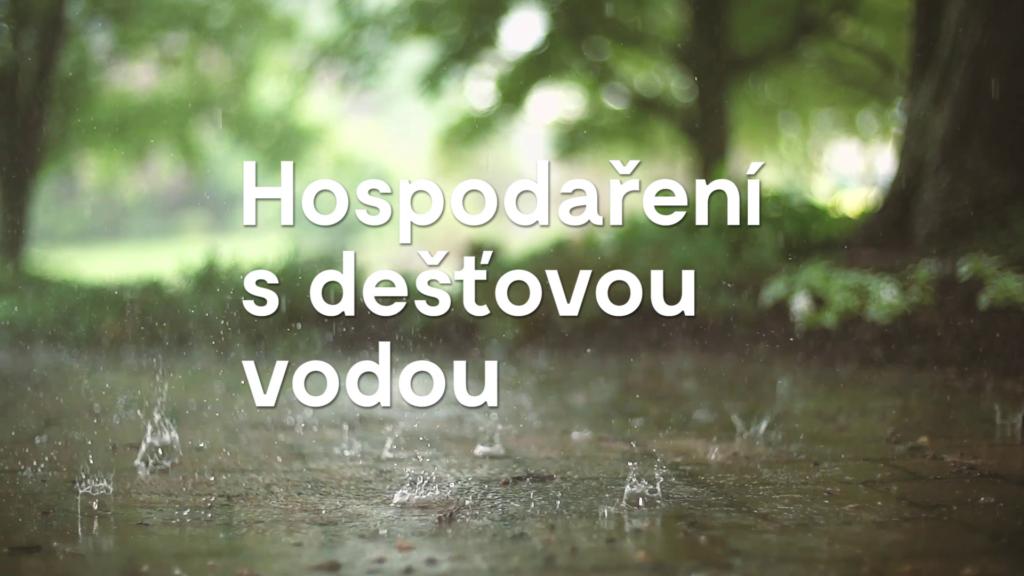 Jak se v Brně hospodaří s dešťovou vodou?